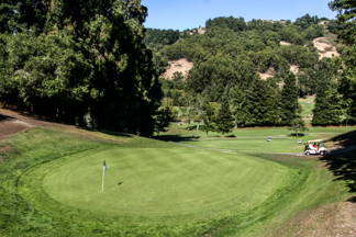 Berkeley Hills California Real Estate Homes Houses For